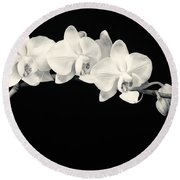 White Orchids Monochrome Round Beach Towel by Adam Romanowicz