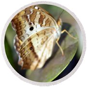 Round Beach Towel featuring the photograph White Peacock Butterfly by Greg Allore