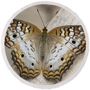 White Peacock Butterfly Round Beach Towel by Judy Whitton
