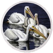 White Pelicans Fishing Round Beach Towel