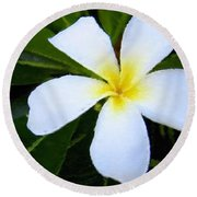 Round Beach Towel featuring the mixed media White Plumeria by Anthony Fishburne