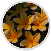 Round Beach Towel featuring the photograph White Plumeria by Miguel Winterpacht
