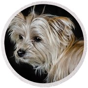 White Puppy Round Beach Towel