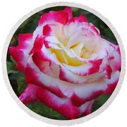 White Rose With Pink Texture Hybrid Round Beach Towel