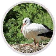 Round Beach Towel featuring the photograph White Stork  by Teresa Zieba