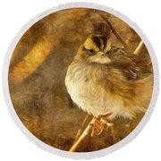 White Throated Sparrow Round Beach Towel