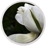 Round Beach Towel featuring the photograph White Tulip by Nadalyn Larsen