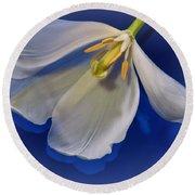 White Tulip On Blue Round Beach Towel