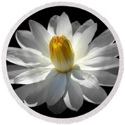 White Water Lily #2 Round Beach Towel
