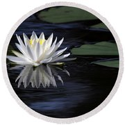 White Water Lily Left Round Beach Towel
