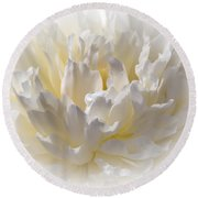 White Peony With A Dash Of Yellow Round Beach Towel by Sherman Perry