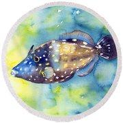 Whitespot Filefish Round Beach Towel