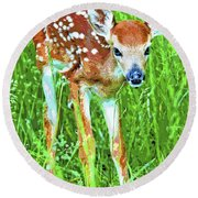 Whitetailed Deer Fawn Digital Image Round Beach Towel