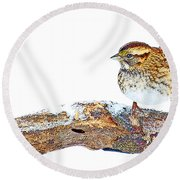 Whitethroated Sparrow On Snow-dusted Tree Branch Digital Art Round Beach Towel