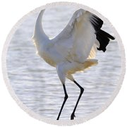 Whooping Crane - Whooping It Up Round Beach Towel