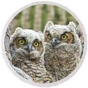 Who's There? Round Beach Towel