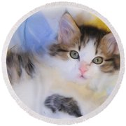 Wide Eyed Kitten Round Beach Towel