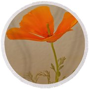 Wild California Poppy No 1 Round Beach Towel