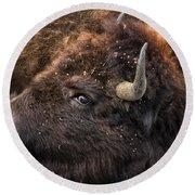 Wild Eye - Bison - Yellowstone Round Beach Towel
