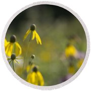 Round Beach Towel featuring the photograph Wild Flowers by Daniel Sheldon
