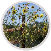 Round Beach Towel featuring the photograph Wild Growth by Erika Weber