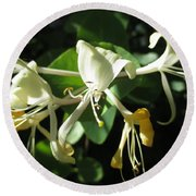 Wild Honeysuckle Round Beach Towel
