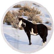 Wild Horse Stallion Round Beach Towel