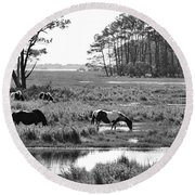Wild Horses Of Assateague Feeding Round Beach Towel by Dan Friend