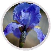 Wild Iris Round Beach Towel