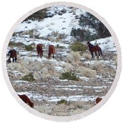 Wild Mustangs In A Nevada Winter Round Beach Towel