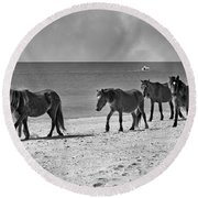 Wild Mustangs Of Shackleford Round Beach Towel