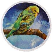 Wild Parakeet Round Beach Towel by Michael Creese
