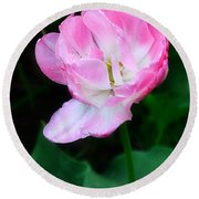 Wild Pink Rose Round Beach Towel