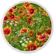Round Beach Towel featuring the photograph Wild Red Daisies #2 by Robert ONeil