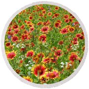 Round Beach Towel featuring the photograph Wild Red Daisies #3 by Robert ONeil