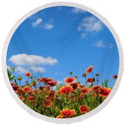 Round Beach Towel featuring the photograph Wild Red Daisies #6 by Robert ONeil
