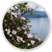 Round Beach Towel featuring the photograph Wild Roses - West Highlands by Phil Banks