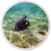Round Beach Towel featuring the photograph Wild Sea Turtle Underwater by Eti Reid