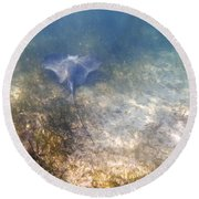 Round Beach Towel featuring the photograph Wild Sting Ray by Eti Reid