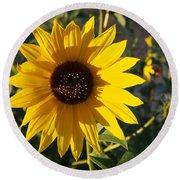 Wild Sunflower Round Beach Towel by Nadja Rider