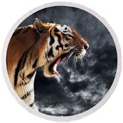 Wild Tiger Roaring. Isolated On Dramatic Background Round Beach Towel