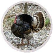 Wild Turkey Mnt Zion Ut Round Beach Towel