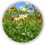 Round Beach Towel featuring the photograph Wild White Daisies #2 by Robert ONeil