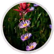 Round Beach Towel featuring the photograph Wildflowers by Steven Reed