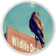 Wildlife Drive Greeter Round Beach Towel