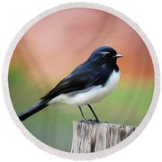 Willy Wagtail Austalian Bird Painting Round Beach Towel