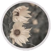 Windblown Wild Sunflowers Round Beach Towel