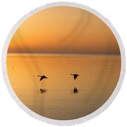 Round Beach Towel featuring the photograph Wings At Sunrise by Georgia Mizuleva