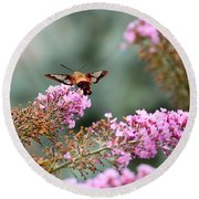 Round Beach Towel featuring the photograph Wings In The Flowers by Kerri Farley