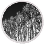 Round Beach Towel featuring the photograph Winter Aspens by Roselynne Broussard